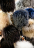 fur caps - photo/picture definition - fur caps word and phrase image