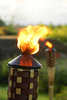 tiki torch - photo/picture definition - tiki torch word and phrase image