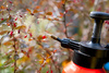 fertilizing spray - photo/picture definition - fertilizing spray word and phrase image