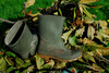 gumboots - photo/picture definition - gumboots word and phrase image