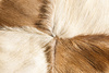 fur pattern - photo/picture definition - fur pattern word and phrase image