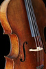 cello - photo/picture definition - cello word and phrase image
