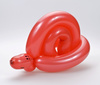 balloon snail - photo/picture definition - balloon snail word and phrase image