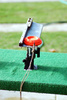 clay pigeon launcher - photo/picture definition - clay pigeon launcher word and phrase image