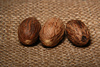 nutmegs - photo/picture definition - nutmegs word and phrase image
