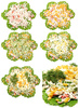 salad preparation - photo/picture definition - salad preparation word and phrase image