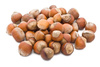 filbert nuts - photo/picture definition - filbert nuts word and phrase image