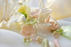 sugar flowers - photo/picture definition - sugar flowers word and phrase image