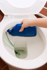 toilet cleaning - photo/picture definition - toilet cleaning word and phrase image