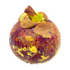 mangosteen - photo/picture definition - mangosteen word and phrase image