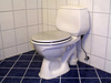 toilet - photo/picture definition - toilet word and phrase image