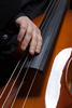 electric contrabass - photo/picture definition - electric contrabass word and phrase image