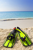 snorkeling flippers - photo/picture definition - snorkeling flippers word and phrase image