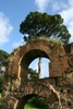 Palatine Hill ruins - photo/picture definition - Palatine Hill ruins word and phrase image
