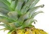 pineapple leaf - photo/picture definition - pineapple leaf word and phrase image