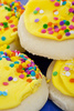 frosted sugar cookies - photo/picture definition - frosted sugar cookies word and phrase image