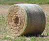 rolling haystack - photo/picture definition - rolling haystack word and phrase image