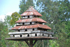 bird palace - photo/picture definition - bird palace word and phrase image