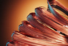 copper skeins - photo/picture definition - copper skeins word and phrase image