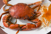 cooked crab - photo/picture definition - cooked crab word and phrase image