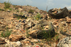 area landfills - photo/picture definition - area landfills word and phrase image