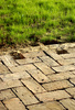 brick pavers - photo/picture definition - brick pavers word and phrase image
