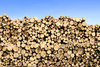 timber pile - photo/picture definition - timber pile word and phrase image