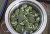 chopped broccoli - photo/picture definition - chopped broccoli word and phrase image